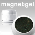 10 x 4ml Magnetgel Sea-Green-Silver *OHNE LABEL
